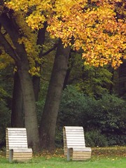 Silence (yve_all) Tags: parkbank ruhe silence stille natur nature colours farben parkbench trees bume