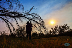 0817 IMG_2557 (JRmanNn) Tags: sunset ashmeadows francisca silhouette pahrump lasvegas