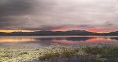 Teemburra Dam (JarrodAllison) Tags: sony alpha jarrod allison teemburra dam mackay australia pink sunset landscape photography queensland