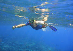 Sveinung below the surface (Sven Rudolf Jan) Tags: tufi papuanewguinea snorkelling corals