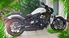 My Love... (vrochas) Tags: motorbike love dreams kawasaki custon vaniarocha brasil