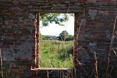through the window (kokoschka's doll) Tags: ruin derelict tree farmland