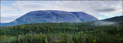 Gros Morne (greenschist) Tags: trees mountain newfoundland grosmorne canada grosmornenationalpark forest scenicsnotjustlandscapes