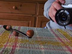 #95 of 116 in 2016 - Balance (amy's antics) Tags: balance nuts hazel spoon camera