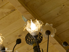 Lamp in wood | August 24, 2016 (djsalvomanfo31) Tags: glass wedding outdoors shabbychic nature plants restaurant wood macro details glasses raw canonpowershotg12