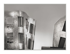 Frank Gehry Building, Lou Ruvo Center for Brain Health, Las Vegas, NV, #60 (Vincent Galassi) Tags: lasvegas nevada usa frankgehrybuilding louruvocenterforbrainhealth nv 60 architecture engineering city cityscapes civil fine art black white