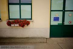 PLW_5537 (Laszlo Perger) Tags: wien vienna österreich austria blumengarten hirschstetten flowergarden