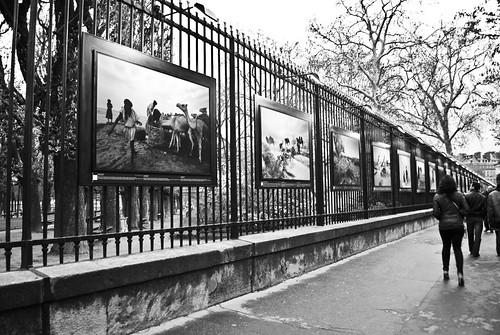 Jardin du Luxembourg Paris 2010