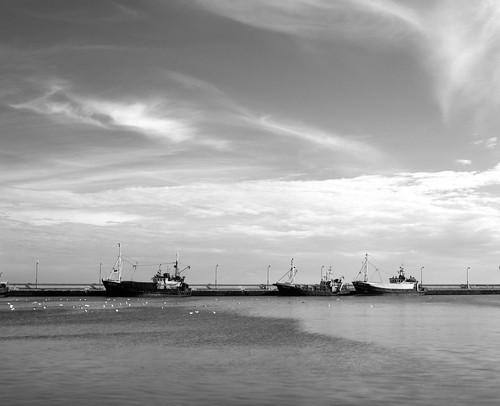 Port.