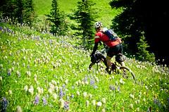 Chilcotins Round Two (Sam Skalsvik) Tags: alpine mountainbiking chil chilcotins windypass sprucelake hightrail tyaughtonlake bikepacking eldoradopass alpinebiking chilcotinsmountainbiking camelpass chilcotinshiking