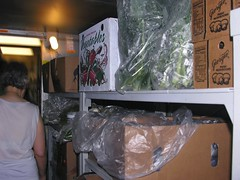 Kitchen tour: produce (jere7my) Tags: camp kitchen plymouth dininghall renovations produce refrigerator walkin pinewoods dancecamp kitchentour rscds greatscot dininghalltour