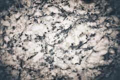 NAKT0018 (Neil Kremer3) Tags: texture highresolution raw free hires neilkremer