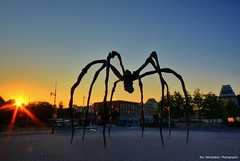 they attack at dawn! (Rex Montalban Photography) Tags: sunrise spider nikon ottawa hdr louisebourgeois nationalgeographic nationalgalleryofcanada multipleimages photomatix mamansculpture d7000 longsunrays rexmontalbanphotography