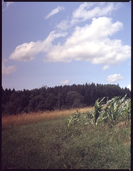 (dennibraun) Tags: film landscape slide slidefilm filter e 200 nd polarizer grad ektachrome e200 ektachrome200
