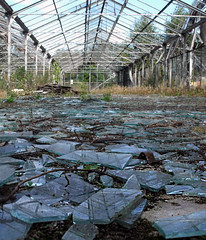 (ne_viens) Tags: glass brokenglass greenhouse