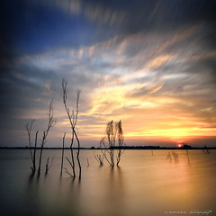 The end of the day (sirman88) Tags: sunset panorama lake motion interestingness glorious malaysia mystical pointing f11 puchong selangor oldtrees nd400 traveldestinations d7000 tokina1116 sirman photographyoutdoors tasikpuchong sirman88 azmanrahmanphotography