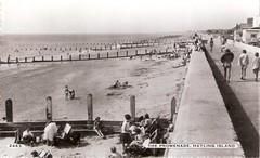 Hayling Beach (steve 2001) Tags: hampshire hayling island beach sea portsmouth groyne wall