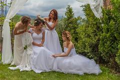 20160613_110117_RS.jpg (FotoKreator Robert Szczchor) Tags: wedding spring wiosna promocja villatoscana sukniaslubna fotokreator wwwfotokreatoreu