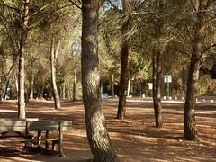 Barragem de Odivelas (LuPan59) Tags: lupan59 ferias 2016 vero passeios friasdevero2016 passeiosdemota odivelas barragem