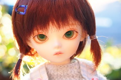 Yesenia (Tales of Karen) Tags: bluefairy shiny fairy may 3rd beautywhite balljointed doll resin