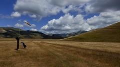 P1020067 (mlandmann) Tags: gleitschirm paragliding castelluccio