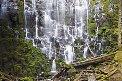 Ramona Falls, Mount Hood, Oregon (@run rao) Tags: waterfalls oregon green mount hood national forest mounthood ramona