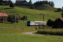Messzug mit Bombardier Lokomotive Baureihe 187 003 - 9 und Messwagen WRm 61 85 88 - 94 202 - 8 ob S.chwarzwasserbrücke im Kanton Bern der Schweiz (chrchr_75) Tags: albumzzz201609september christoph hurni chriguhurni chrchr75 chriguhurnibluemailch september 2016 messzug messfahrt bombardier lokomotive baureihe 187 003 bahn eisenbahn schweizer bahnen zug train treno albumbahnenderschweiz2016712 albumbahnenderschweiz schweiz suisse switzerland svizzera suissa swiss albumbahnbombardierlokomotivebaureihe187 juna zoug trainen tog tren поезд паровоз locomotora lok lokomotiv locomotief locomotiva locomotive railway rautatie chemin de fer ferrovia 鉄道 spoorweg железнодорожный centralstation ferroviaria