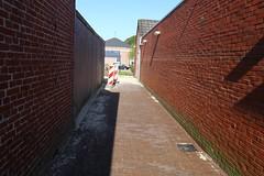 IMG_4111-www.PjotrWiese.nl