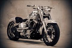 bikes-2009world-102-b-l
