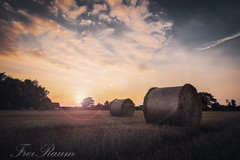 Sunset (klausi1983) Tags: sun sunset sunny light sky clouds sony a7ii field reflection flares day night