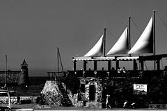le fameux trois mts - the famous three-masted (png nexus) Tags: nb bw noir blanc black white extrieur street rue bateau boat