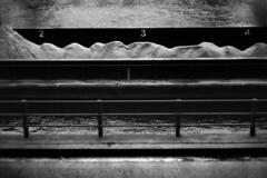 PARCELLE 16-035_04 (gyjishukke) Tags: analog argentique monochrome noiretblanc believeinfilm shootfilm minoltax700 50mm filtrejaune 32 scanlowdef ilford delta400 ie800iso selfdevelopment kodakhc110b 10 20 pniche seine sable tas chiffre quai fleuve bw