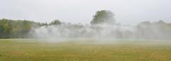 Fog Assembly (silvia.lenguito) Tags: olafureliasson versailles chateau palaisroyal royalpalace chateaudeversailles sitespecific art contemporaryart jardin garden nature