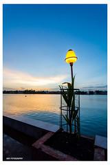 ABS_2748 (ABHITANSHU_SONI) Tags: raipur chhattisgarh marinedrive telebandha flagpoint