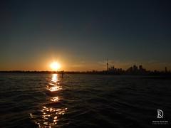 Sunset Scenery (kaprysnamorela) Tags: toronto ontario canada tower tommythompsonpark cntower ontariolake lake sunset water sup paddle nikoncoolpixs9400