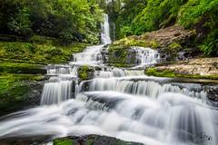 Catlins (Stahlinho) Tags: chaslands otago neuseeland catlins mclean falls waterfall wasserfall newzealand water wasser rainforest regenwald wald forest