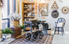 ama4 (ADJstyle) Tags: adjectives adjstyle centralflorida furniture homedecor products