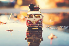 First I drink the coffee. Then I do the things. (Sandra H-K) Tags: miniature miniaturemonday toy toyphotography toybus vwbus vw reflection puddle bokeh bokehlicious leaves september outside ontheground outdoors dof depthoffield golden goldenhour sunlight reflections