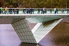 Walking on Water_0125 (Rikx) Tags: adelaidecrows adelaideoval footbridge rivertorrens walkingonwater aussierules aussierulesfootball aussie outdoor bridge horizonta adelaide southaustralia