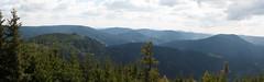 Panorama sur les hauteurs d' Oppenau (aurelien.ebel) Tags: allemagne badewurtemberg oppenau schwarzwald