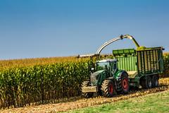 Markenvielfalt (Fotos aus OWL) Tags: silage ernte biogas abfahrer traktor hcksler fendt krone claas mais