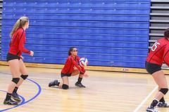 IMG_3022 (SJH Foto) Tags: girls volleyball high school mount olive mt team tween teen teenager varsity dig bump burst mode