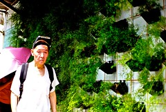 Aug_2012_ShiMenTing_Taipei%2011 (EthanChiang) Tags: street candid taiwan streetphotography streetphoto taipei   streetphotographer taipeistreet burnmyeye taipeistreetphotography streettog streetogs ethanchiang ethanchaing  iphotooriginal apieceoftaipei