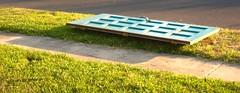 Door Ride (r3nn3r) Tags: door grass puerta hierba sanantoniotexas