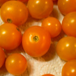 Farmer's Market Sun Gold Tomatos (3) thumbnail