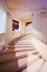 Going up (fluttography) Tags: france architecture spiral staircase chambord chateau loirevalley chateaudechambord