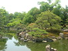 Zen Garden at Nijo Castle, Kyoto (Emanuele_Crocco) Tags: travel travelling japan kyoto viaggi giappone zengarden giardinozen nijocastle viaggiare projectweather eyesoftravellers