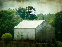 Rural Impressions (Nichole Renee) Tags: barn photoshop artistic farm elements filters textured distressedjewell