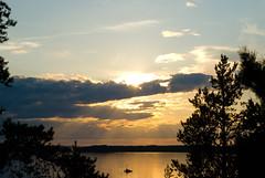 Summer. (OCS82) Tags: summer suomi finland further kes puumala
