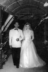 Bordallo Wedding, 1953